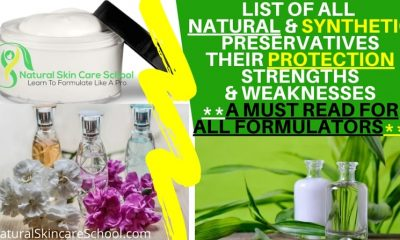natural synthetic preservatives protection strength