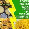 natural vegan waxes organic cosmetic formulation