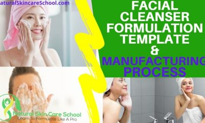 facial cleanser formulation template